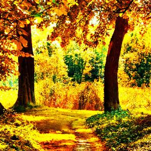 Autumn fan Art