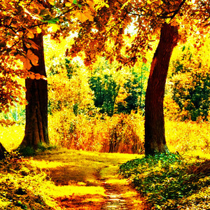 Autumn 팬 Art