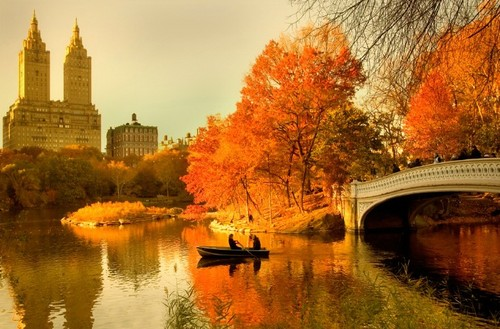 cherl12345 (Tamara) wallpaper entitled Autumn In New York