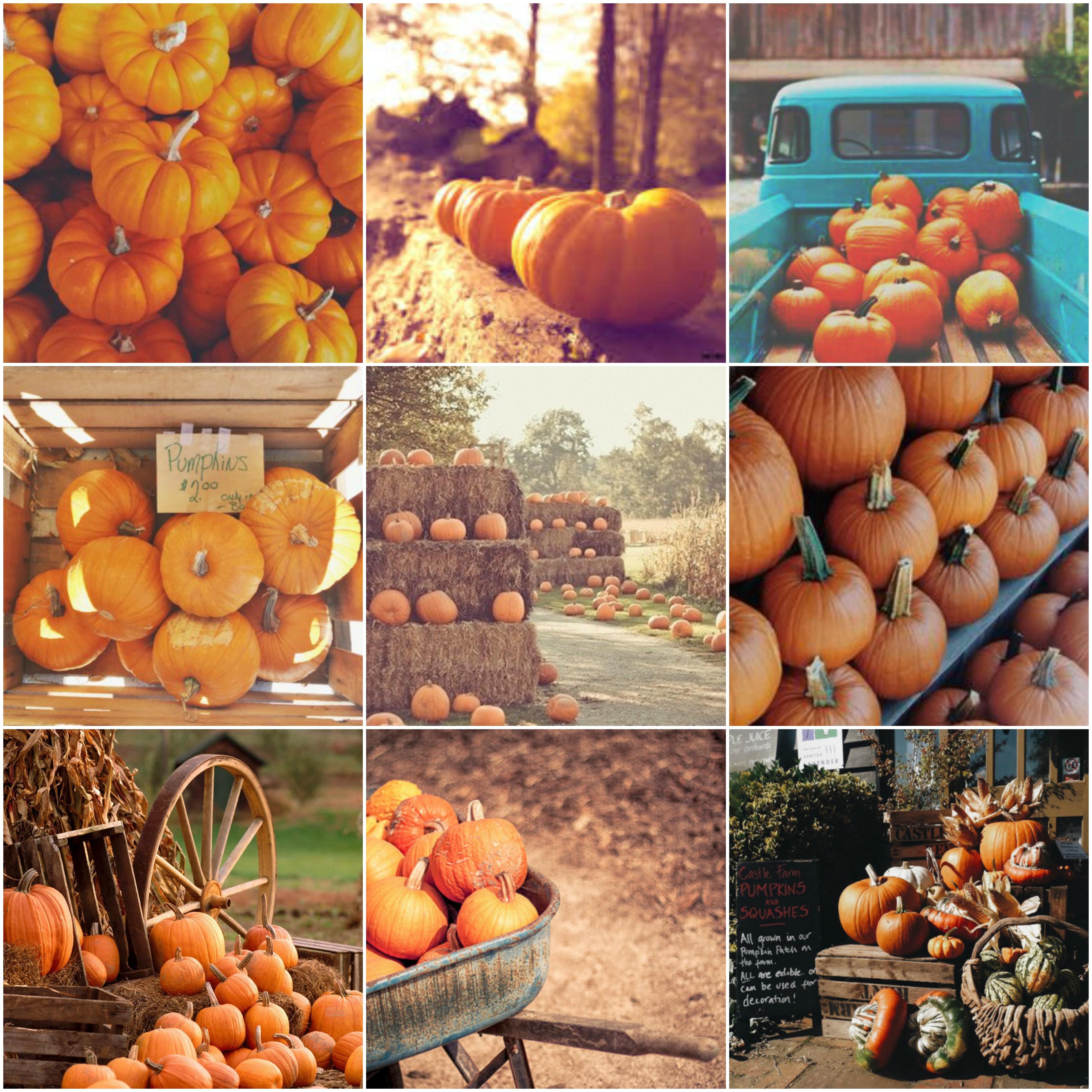 Autumn Pumpkin Themed Collage