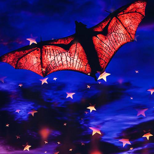 zanhar1 দেওয়ালপত্র titled Bat