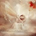 Beautiful Angel - angels photo
