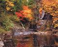 Beautiful Autumn día