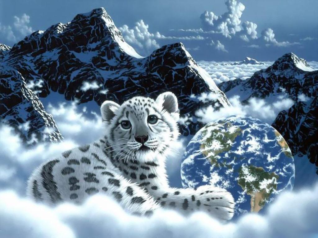 Beautiful Leopard Gdragon Sunny Cat Wallpaper 41526856