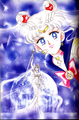 Bishoujo Senshi Sailor Moon - sailor-moon photo
