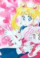 Bishoujo Senshi Sailor Moon - the-moon-family photo