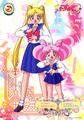 BishoujoSenshi Sailor Moon - sailor-moon photo