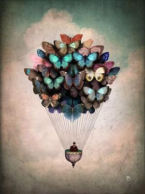 나비 Balloon