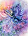 Butterfly - butterflies fan art