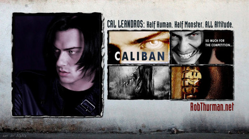 Cal Leandros Series fond d'écran titled Cal Collage