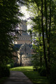 Castle in the forest  - daydreaming photo