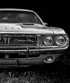 Challenger - muscle-cars photo