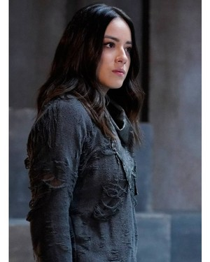 madeliefje, daisy Johnson