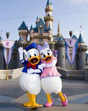 Donald And margarita pato