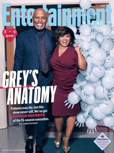 그레이 아나토미 바탕화면 titled Entertainment Weekly Cover 2018