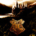 Harry Potter Icon  - harry-potter icon