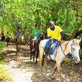 Horseback Riding In Jamaica  - yorkshire_rose photo