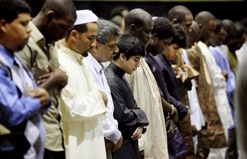 MUSLIMS 壁紙 entitled Islamophobia