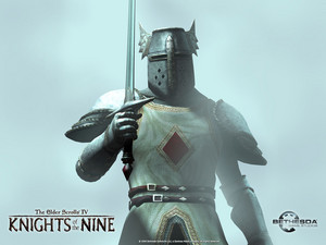 Knights of the Nine wolpeyper - The Crusader