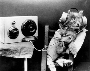 Listening To The Radio
