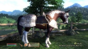 Oblivion Official Screenshot