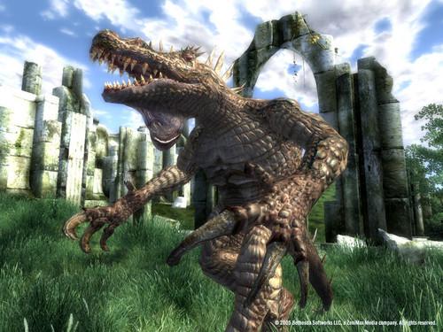 Oblivion (Elder Scrolls IV) fond d'écran titled Oblivion Official Screenshot