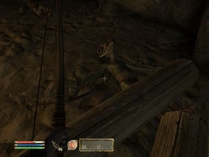 Oblivion Screenshot