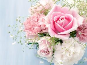 Pretty 花
