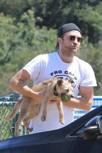greyswan618 wallpaper entitled Robert Pattinson With His Dog 💖