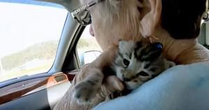 安全 In Mama's Arms