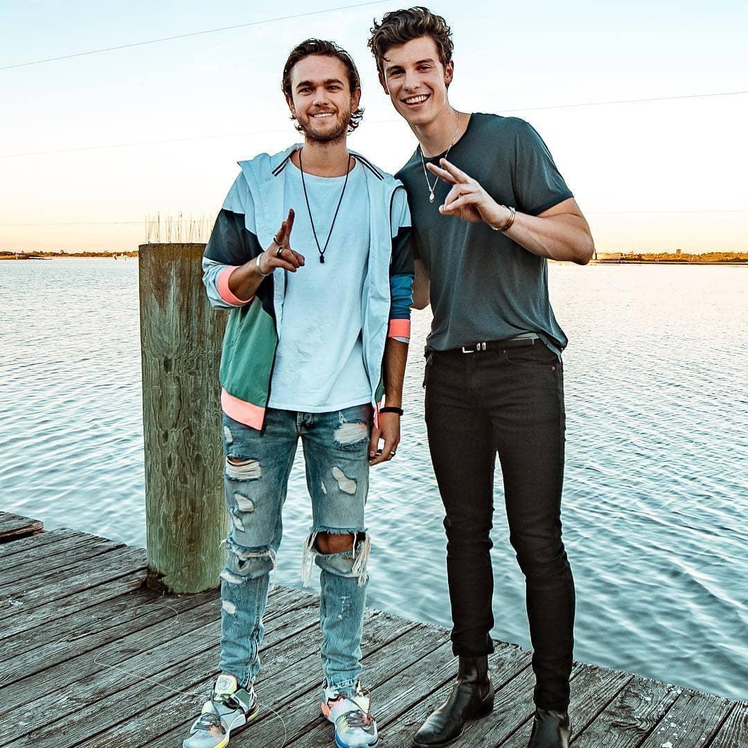 Shawn Mendes and Zedd