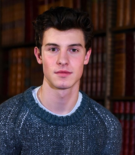 Shawn Mendes 壁纸 titled Shawn Mendes