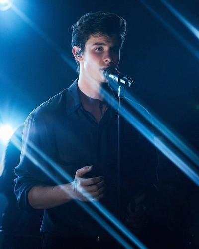 Shawn Mendes 壁纸 entitled Shawn Mendes