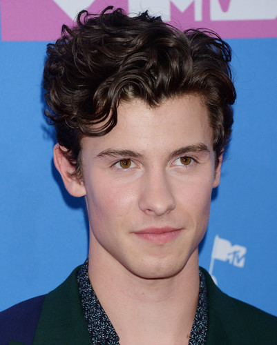 Shawn Mendes 壁纸 called Shawn Mendes