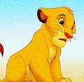 Simba - zvieri fan art