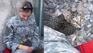 Soldier And Her Kitten
