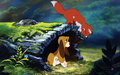 The Fox And The Hound Playing - the-fox-and-the-hound wallpaper