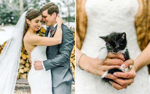 Cats karatasi la kupamba ukuta called The Wedding Party