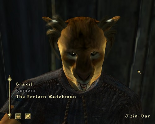 Oblivion (Elder Scrolls IV) fond d'écran titled Weird Mouth Glitch
