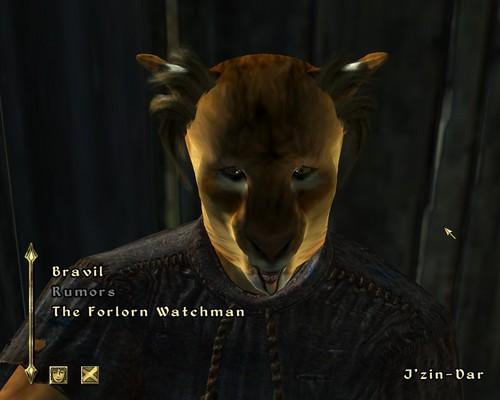 Oblivion (Elder Scrolls IV) fond d'écran entitled Weird Mouth Glitch