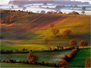 Yorkshire Autumn