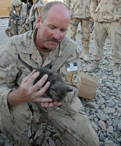 A Soldier And His Kitten