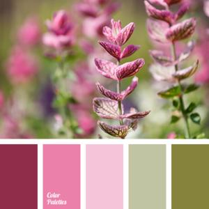 color palette 2617