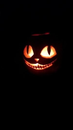 crazy spooky halloween pumkin🎃