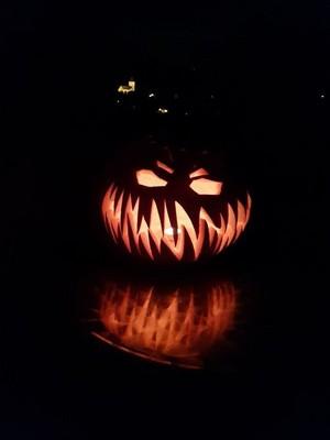 creepy spooky halloween pumkin🎃