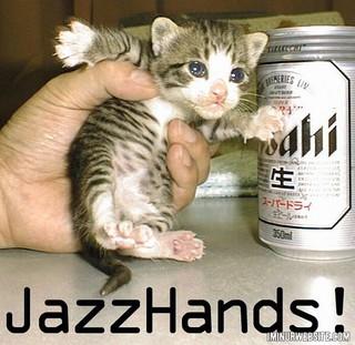 Cute Kittens wallpaper entitled cute kitty memes