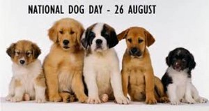 happy national dog dag