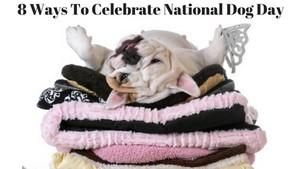 happy national dog Tag