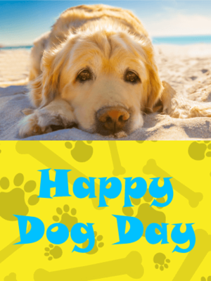 happy national dog dag