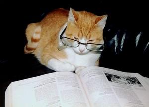 읽기 time